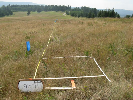 grassland conservation assessment